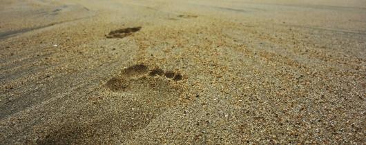 Footsteps-732128 1280