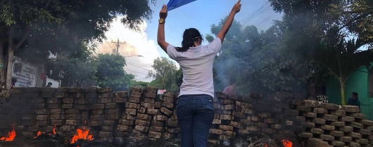 2018 nicaraguan protests - woman and flag public domain sm-min