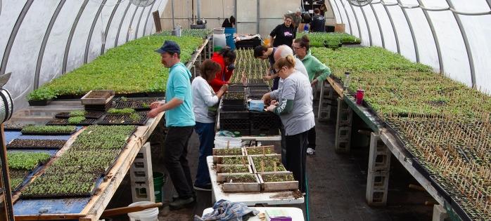 Earthworks-urban-farm-greenhouse-april-2019-min